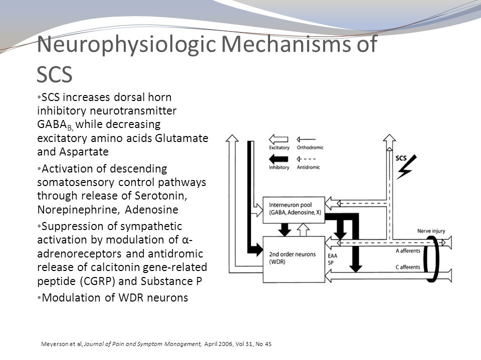 Electrophysiologic Mechanisms of SCS Current flows from Cathode (- ) to Anode (+) resulting in neuronal depolarization at Cathode (-) and hyperpolarization at Anode (+) Electrical parameters are adjusted during programming including electrode polarity, Frequency (Hz), Amplitude (V or ma), and Pulse Width (μs) Potential segmental conductance blockade of spinothalamic tracts