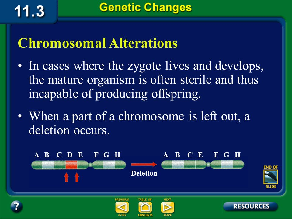 11.3 Section Summary 6.3 – pages 296 - 301 Chromosomal mutations occur in all living organisms, but they are especially common in plants. Few chromoso