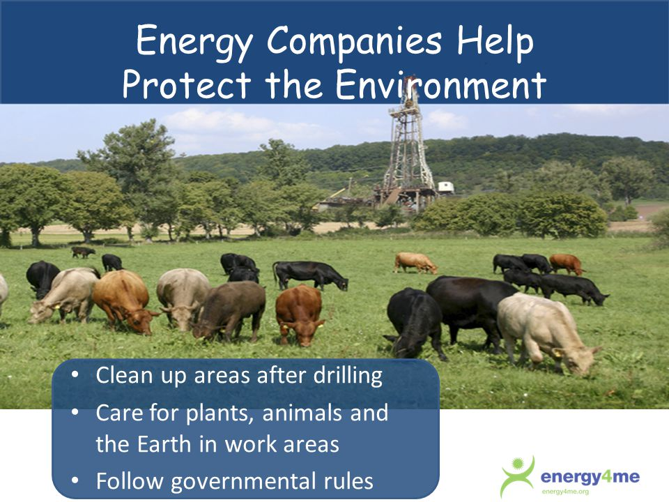 Energy Companies Help Protect the Environment Clean up areas after drilling Care for plants, animals and the Earth in work areas Follow governmental rules