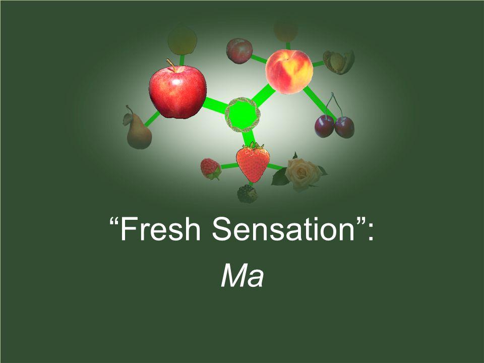 Fresh Sensation: Ma