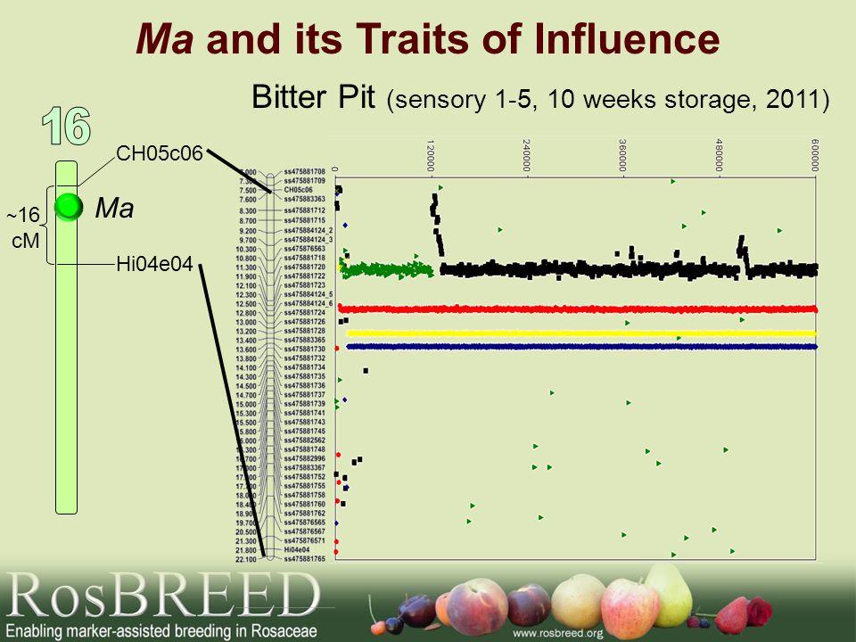 Ma and its Traits of Influence Ma CH05c06 Hi04e04 ~ 16 cM Bitter Pit (sensory 1-5, 10 weeks storage, 2011)
