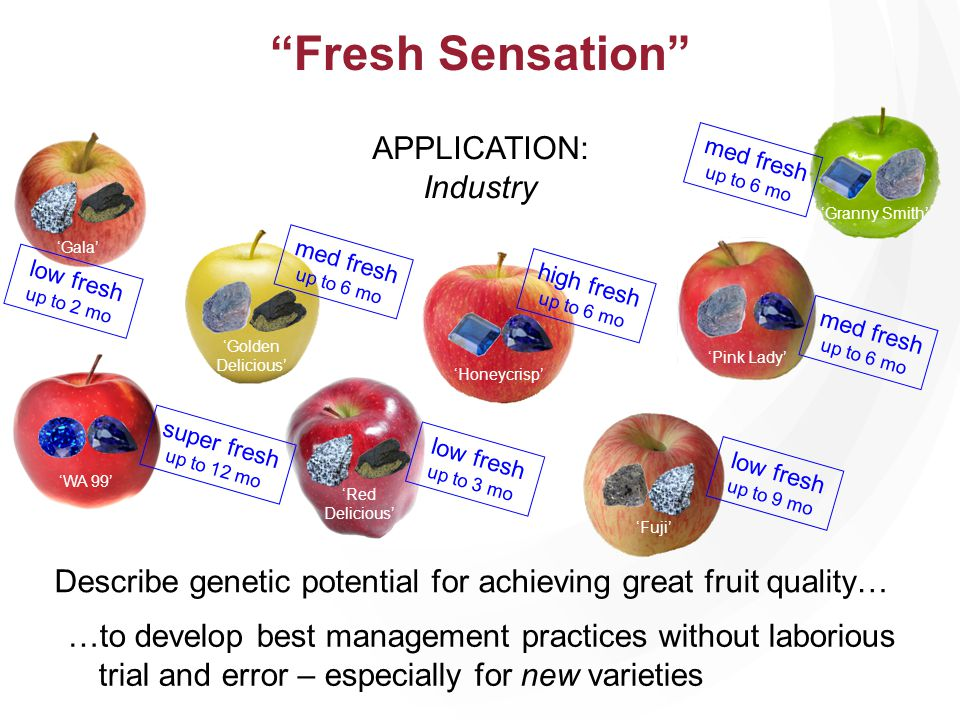 Honeycrisp Granny Smith Gala Pink Lady Fuji Golden Delicious high fresh up to 6 mo low fresh up to 2 mo med fresh up to 6 mo low fresh up to 9 mo Red