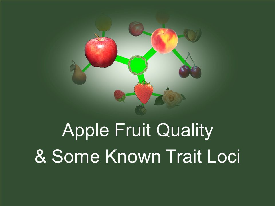 Apple Fruit Quality & Some Known Trait Loci