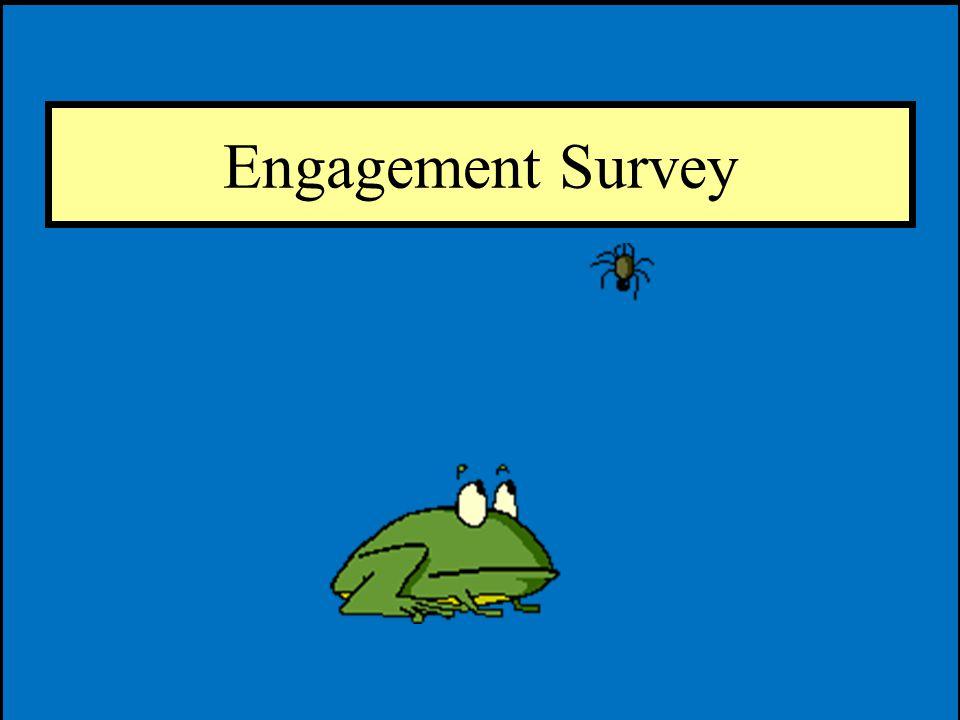 Engagement Survey