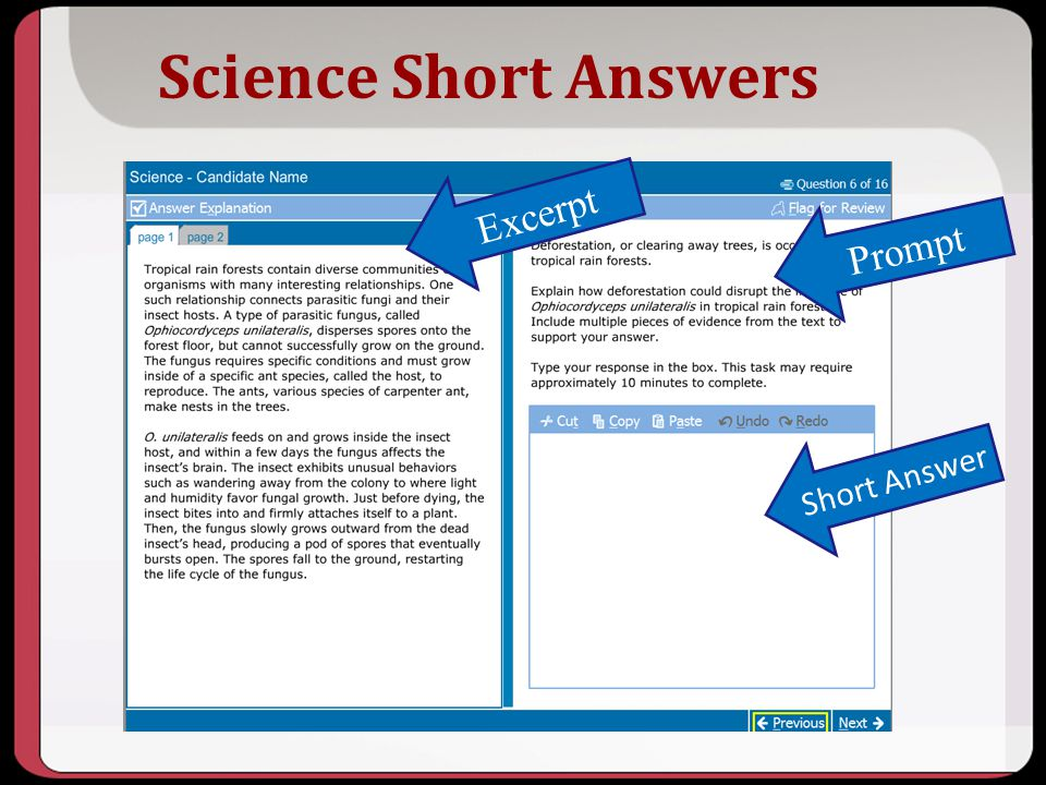 Science Short Answers Prompt Short Answer Excerpt