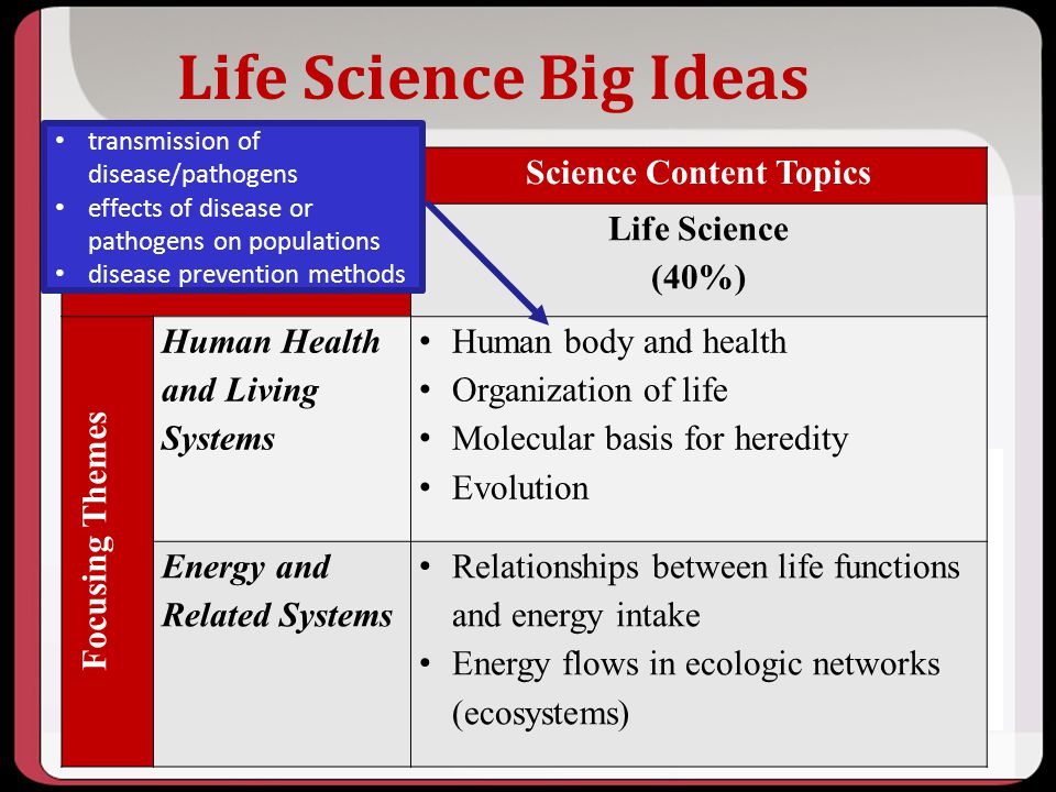 Life Science Big Ideas Science Content Topics Life Science (40%) Focusing Themes Human Health and Living Systems Human body and health Organization of