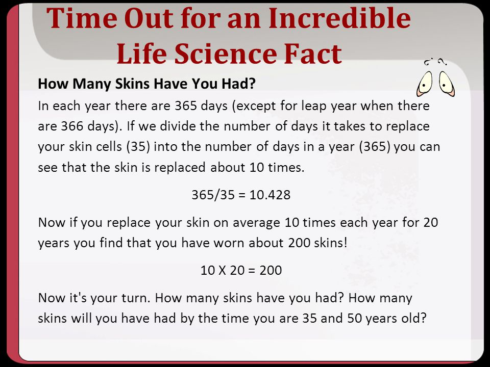 Time Out for an Incredible Life Science Fact How Many Skins Have You Had? In each year there are 365 days (except for leap year when there are 366 day