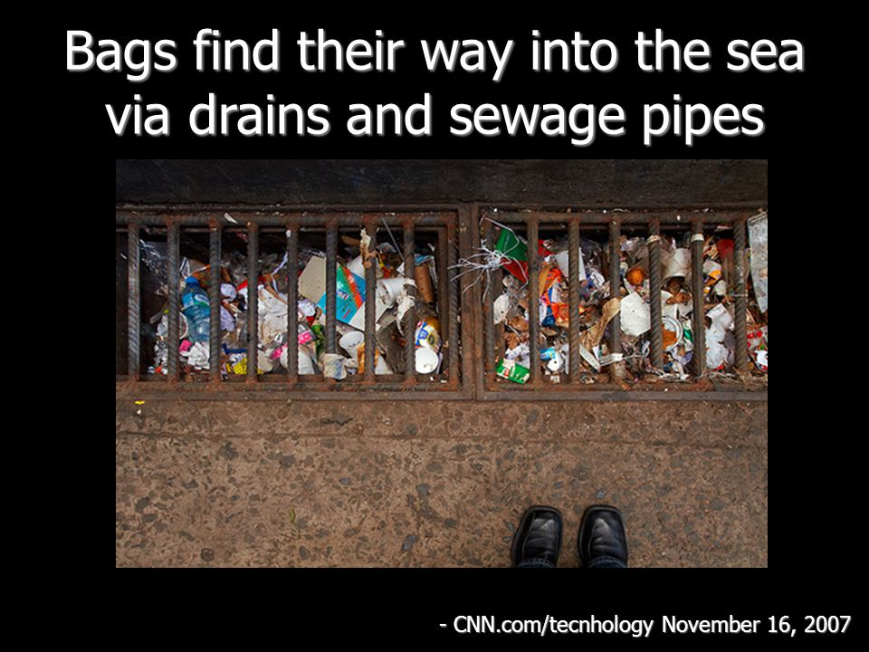 Bags find their way into the sea via drains and sewage pipes - CNN.com/tecnhology November 16, 2007