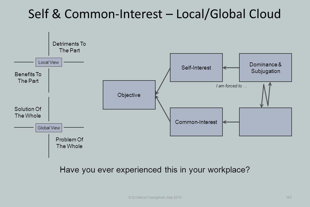 © Dr Kelvyn Youngman, Sep 2013163 Self & Common-Interest – Local/Global Cloud Objective Common-Interest Self-Interest Dominance & Subjugation Problem
