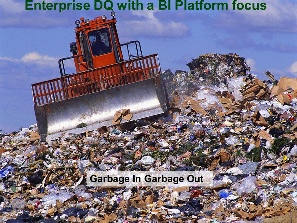 Enterprise DQ with a BI Platform focus Garbage In Garbage Out