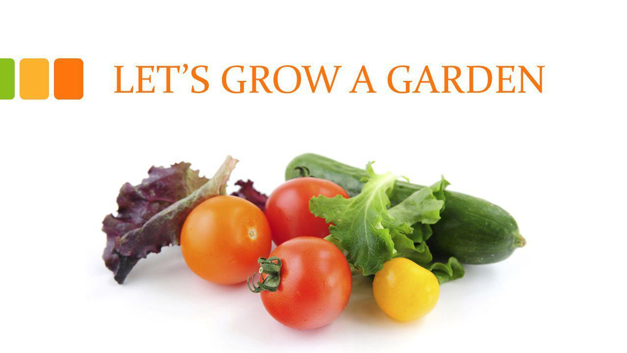 Farm to Pre-school Introduction Resources Build A Garden