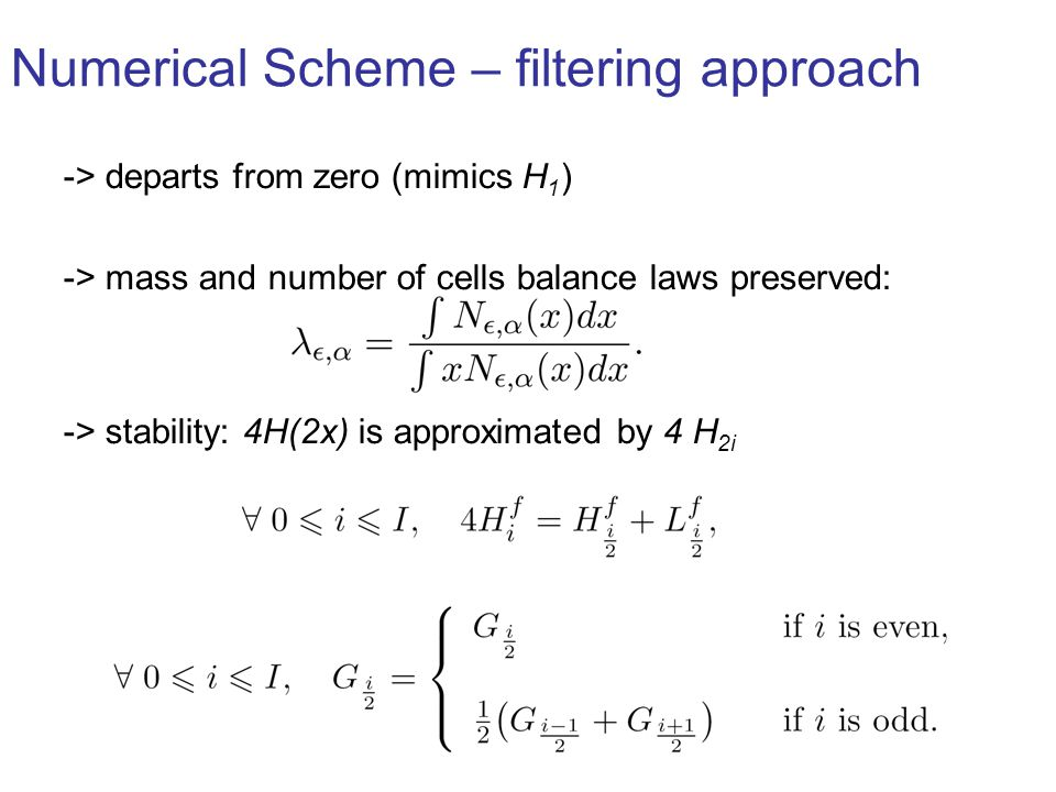 Numerical Scheme – filtering approach -> departs from zero (mimics H 1 ) -> mass and number of cells balance laws preserved: -> stability: 4H(2x) is approximated by 4 H 2i