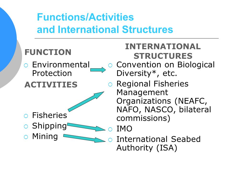 Functions/Activities and International Structures Environmental Protection Fisheries Shipping Mining Convention on Biological Diversity*, etc. Regiona