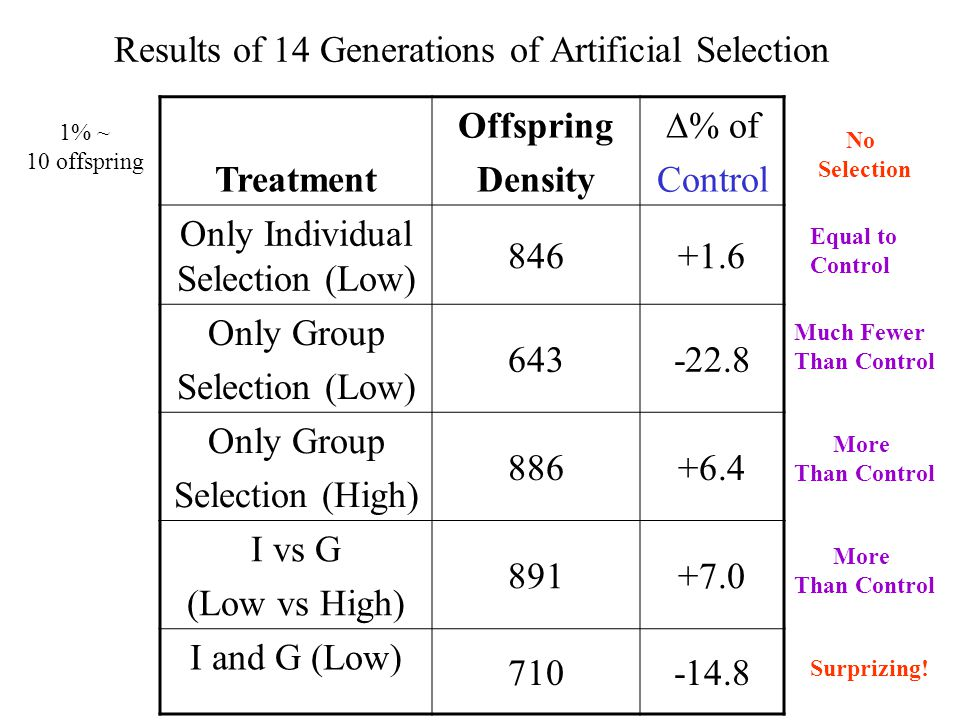 Results of 14 Generations of Artificial Selection Treatment Offspring Density % of Control Only Individual Selection (Low) 846+1.6 Only Group Selection (Low) 643-22.8 Only Group Selection (High) 886+6.4 I vs G (Low vs High) 891+7.0 I and G (Low) 710-14.8 No Selection Equal to Control Much Fewer Than Control More Than Control More Than Control Surprizing.