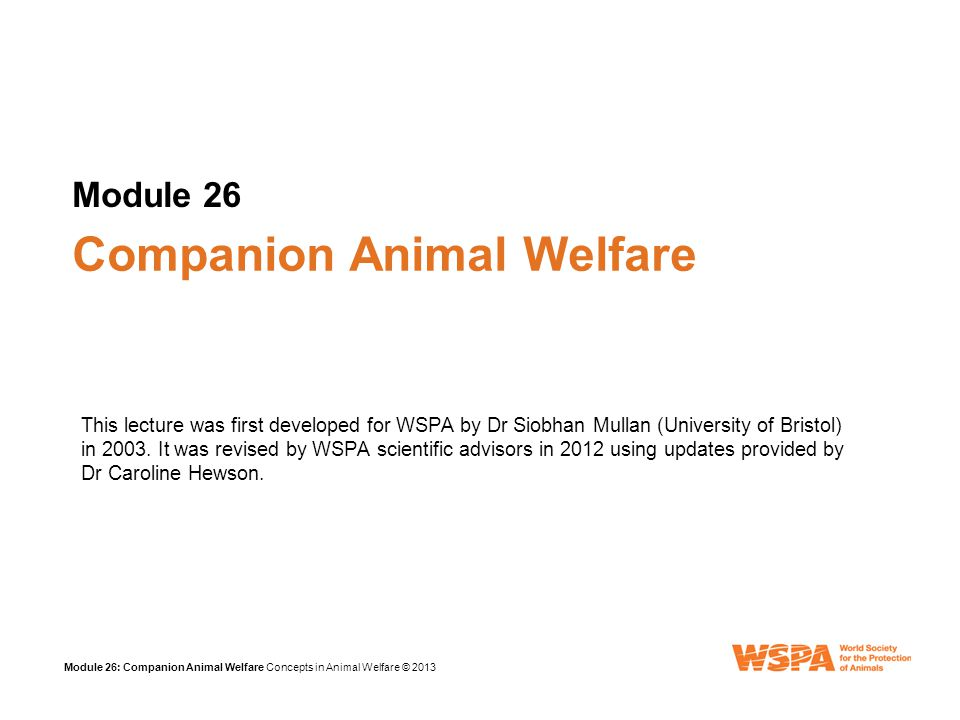 Module 26: Companion Animal Welfare Concepts in Animal Welfare © 2013 Review: Module 14 Companion animals have many welfare problems Vets have a big role in promoting responsible ownership Overpopulation of pets creates strays Control programmes require a coordinated and humane approach Vets can provide scientific and clinical input