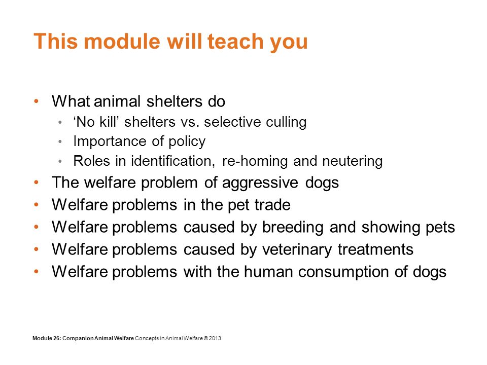 Module 26: Companion Animal Welfare Concepts in Animal Welfare © 2013 Breed-specific Strict provisions Automatic destruction order Difficult to interpret Court given no discretionary powers Reversal of burden of proof The UK Dangerous Dogs Act (1991)