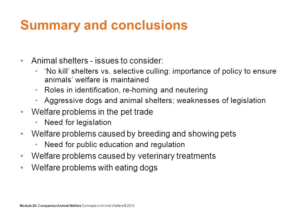 Module 26: Companion Animal Welfare Concepts in Animal Welfare © 2013 Summary and conclusions Animal shelters - issues to consider: No kill shelters vs.