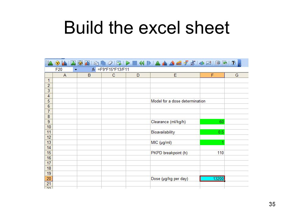 35 Build the excel sheet