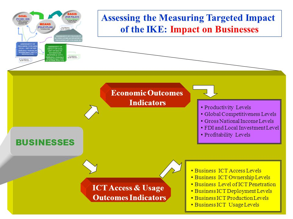 Economic Outcomes Indicators ICT Access & Usage Outcomes Indicators Assessing the Measuring Targeted Impact of the IKE: Impact on Businesses BUSINESSE