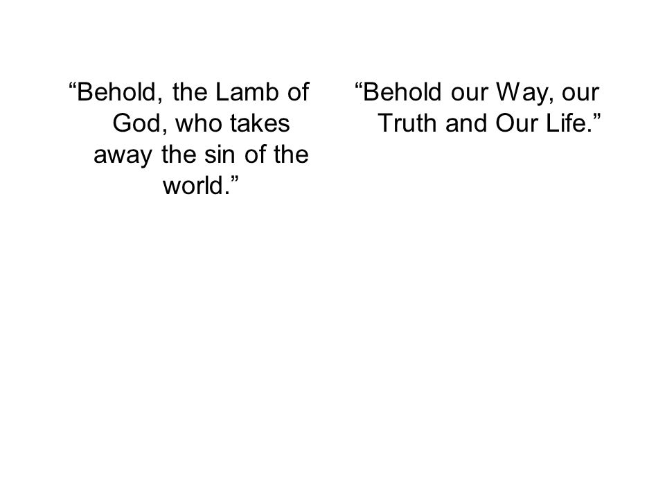 Behold, the Lamb of God, who takes away the sin of the world.