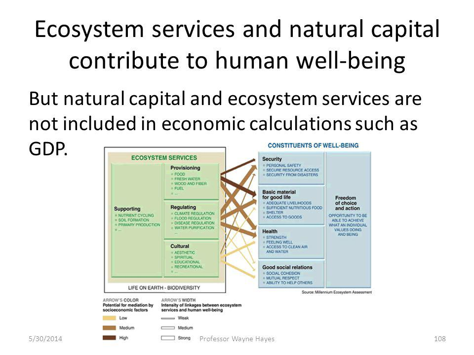 Ecosystem services and natural capital contribute to human well-being But natural capital and ecosystem services are not included in economic calculat
