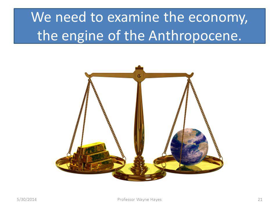 We need to examine the economy, the engine of the Anthropocene. 5/30/2014Professor Wayne Hayes21