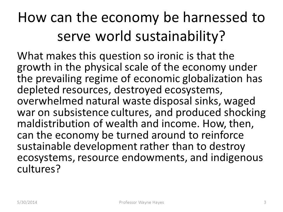 How can the economy be harnessed to serve world sustainability? What makes this question so ironic is that the growth in the physical scale of the eco