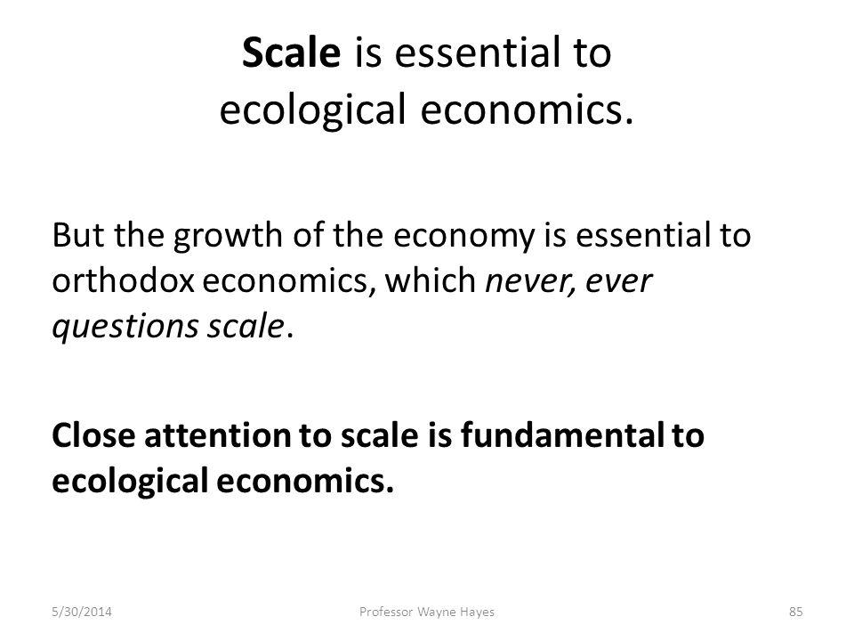 Scale is essential to ecological economics. But the growth of the economy is essential to orthodox economics, which never, ever questions scale. Close