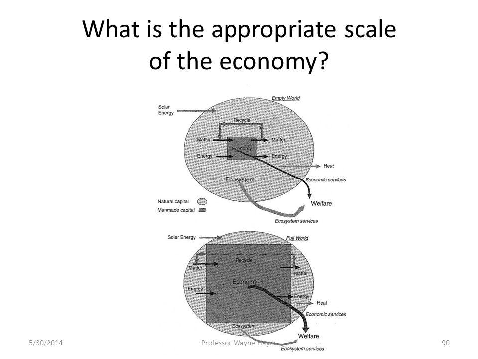 What is the appropriate scale of the economy? 5/30/2014Professor Wayne Hayes90