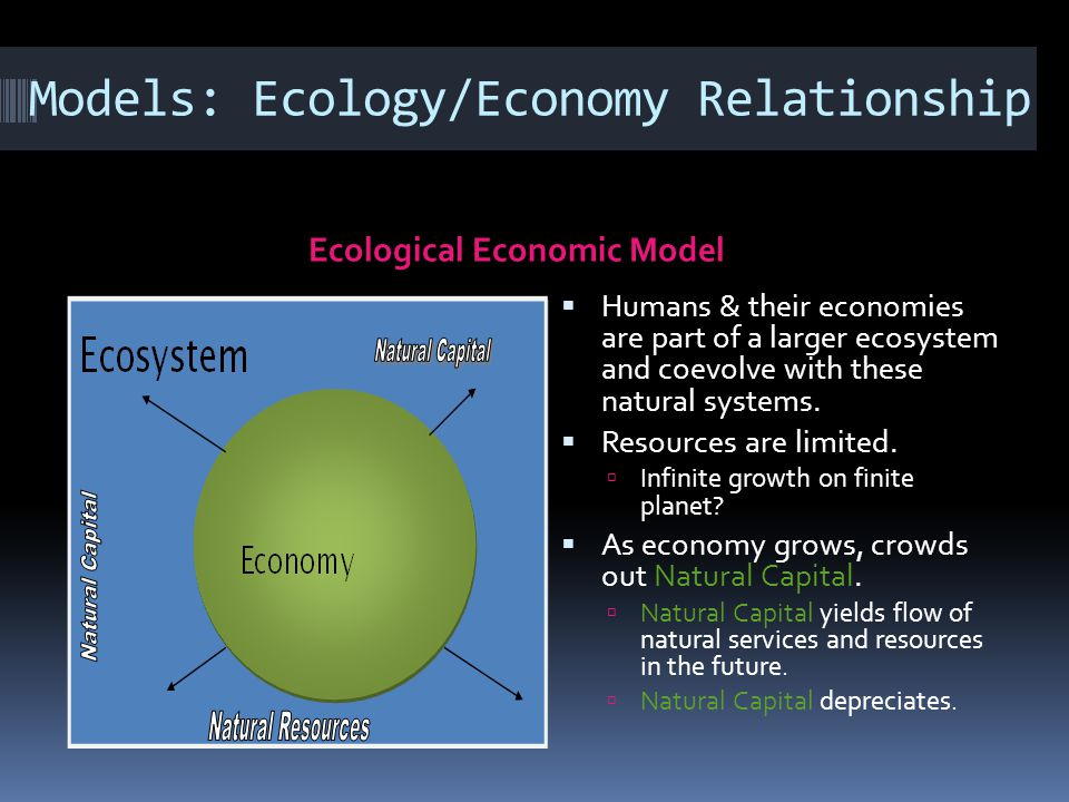 Models: Ecology/Economy Relationship Ecological Economic Model Humans & their economies are part of a larger ecosystem and coevolve with these natural systems.