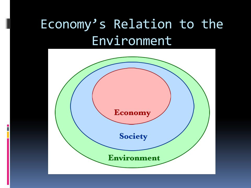 Economys Relation to the Environment
