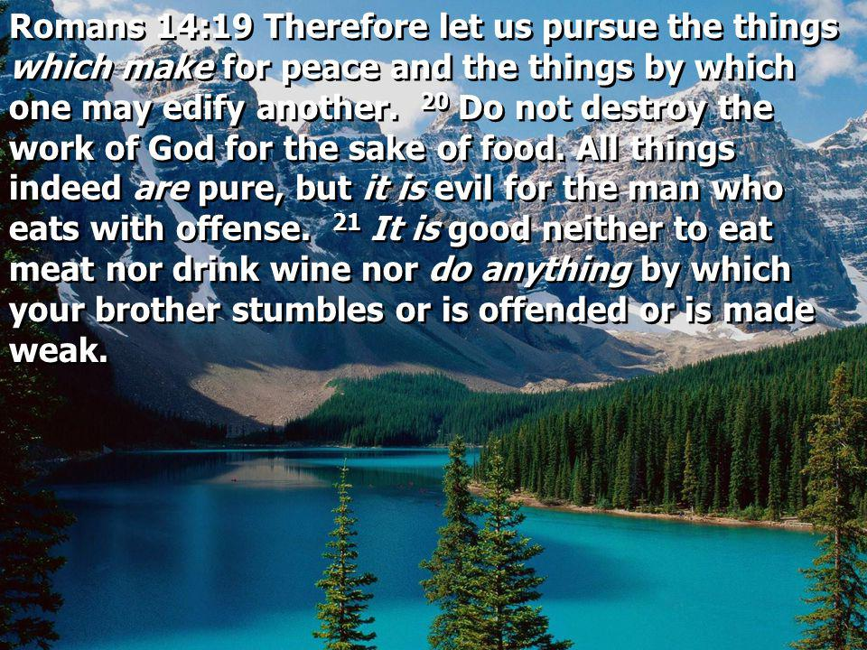 Romans 14:19 Therefore let us pursue the things which make for peace and the things by which one may edify another. 20 Do not destroy the work of God
