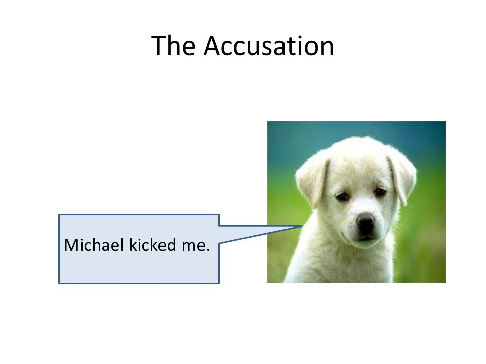 The Accusation Michael kicked me.