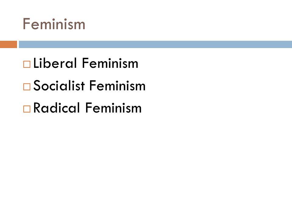 Feminism Liberal Feminism Socialist Feminism Radical Feminism
