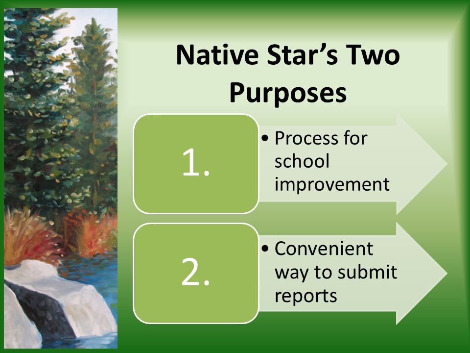 Native Stars Two Purposes Process for school improvement 1. Convenient way to submit reports 2.