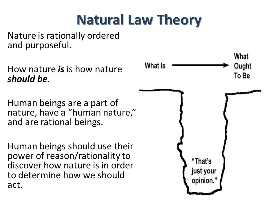 Natural Law Theory Nature is rationally ordered and purposeful. How nature is is how nature should be. Human beings are a part of nature, have a human