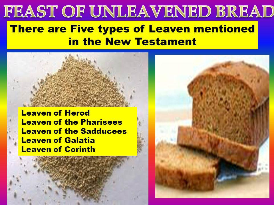 Leaven of Herod Leaven of the Pharisees Leaven of the Sadducees Leaven of Galatia Leaven of Corinth There are Five types of Leaven mentioned in the Ne