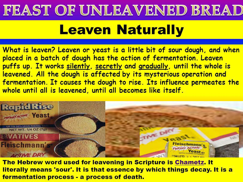 The word leaven occurs ninety-eight times in the Bible seventy-five times in the Old Testament and about twenty-three times in the New Testamentand it is always used in a bad sense except once in Matthew 13:33.