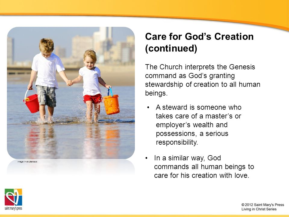 Care for Gods Creation (continued) The Church interprets the Genesis command as Gods granting stewardship of creation to all human beings. A steward i