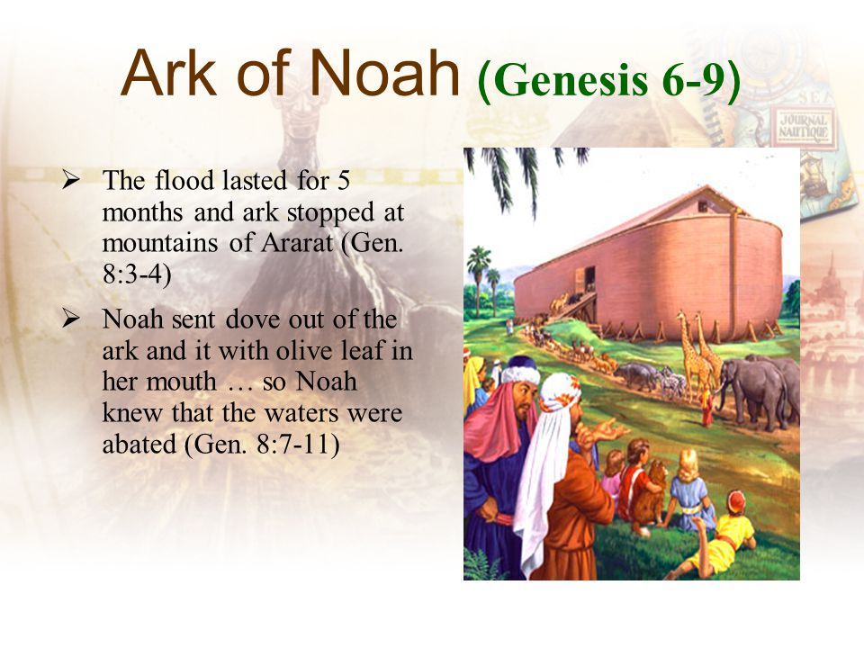 Ark of Noah ( Genesis 6-9 ) The flood lasted for 5 months and ark stopped at mountains of Ararat (Gen.