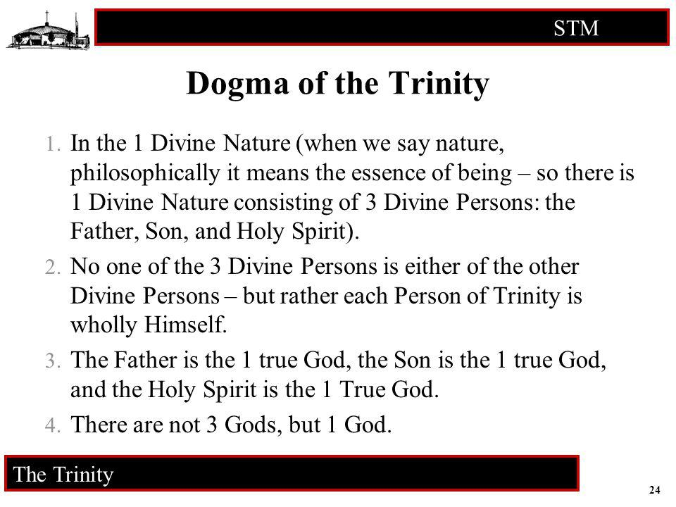 24 STM RCIA The Trinity Dogma of the Trinity 1. In the 1 Divine Nature (when we say nature, philosophically it means the essence of being – so there i