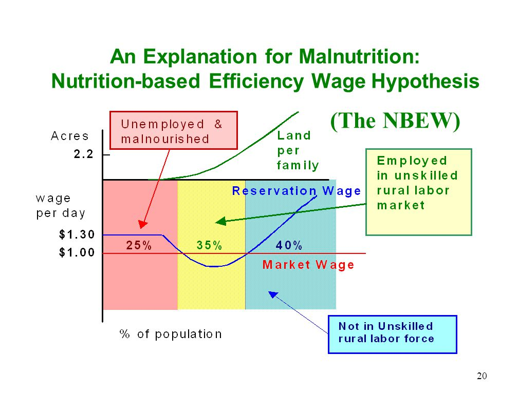 An Explanation for Malnutrition: Nutrition-based Efficiency Wage Hypothesis 20 (The NBEW)