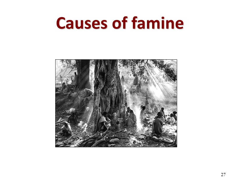 Causes of famine 27