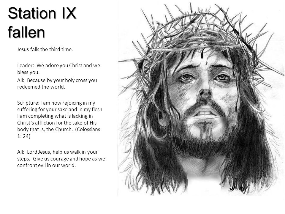 Station IX fallen Jesus falls the third time. Leader: We adore you Christ and we bless you.