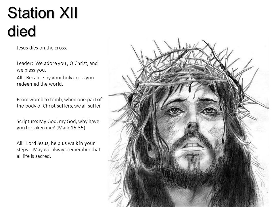 Station XII died Jesus dies on the cross. Leader: We adore you, O Christ, and we bless you.