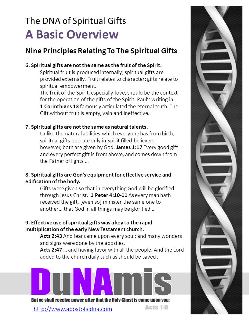 http://www.apostolicdna.com The DNA of Spiritual Gifts A Basic Overview 6.