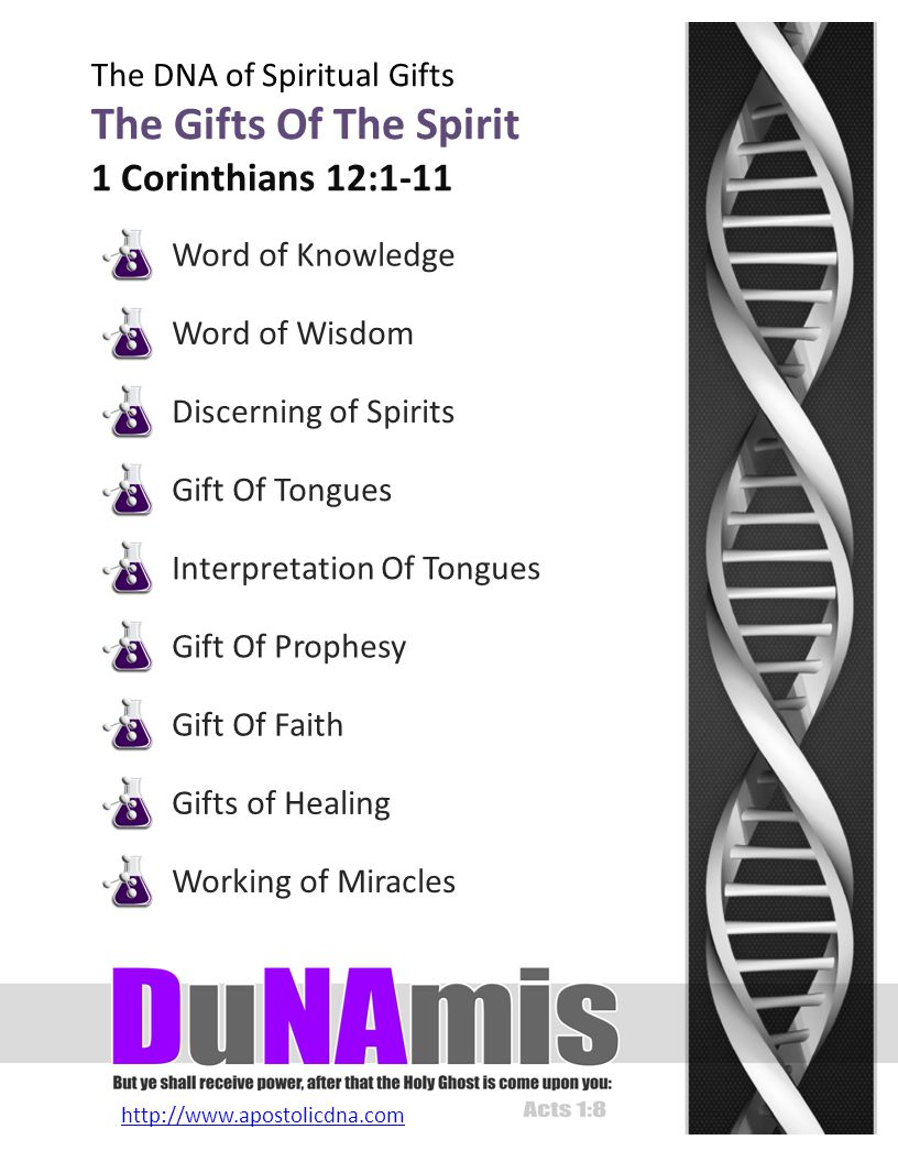 http://www.apostolicdna.com The DNA of Spiritual Gifts Discerning Of Spirits Revelation Through Perception Keywords: sensitive, perceptive, sharp, astute Governing Be-Attitude Blessed are they which are persecuted for righteousness sake: for theirs is the kingdom of heaven.