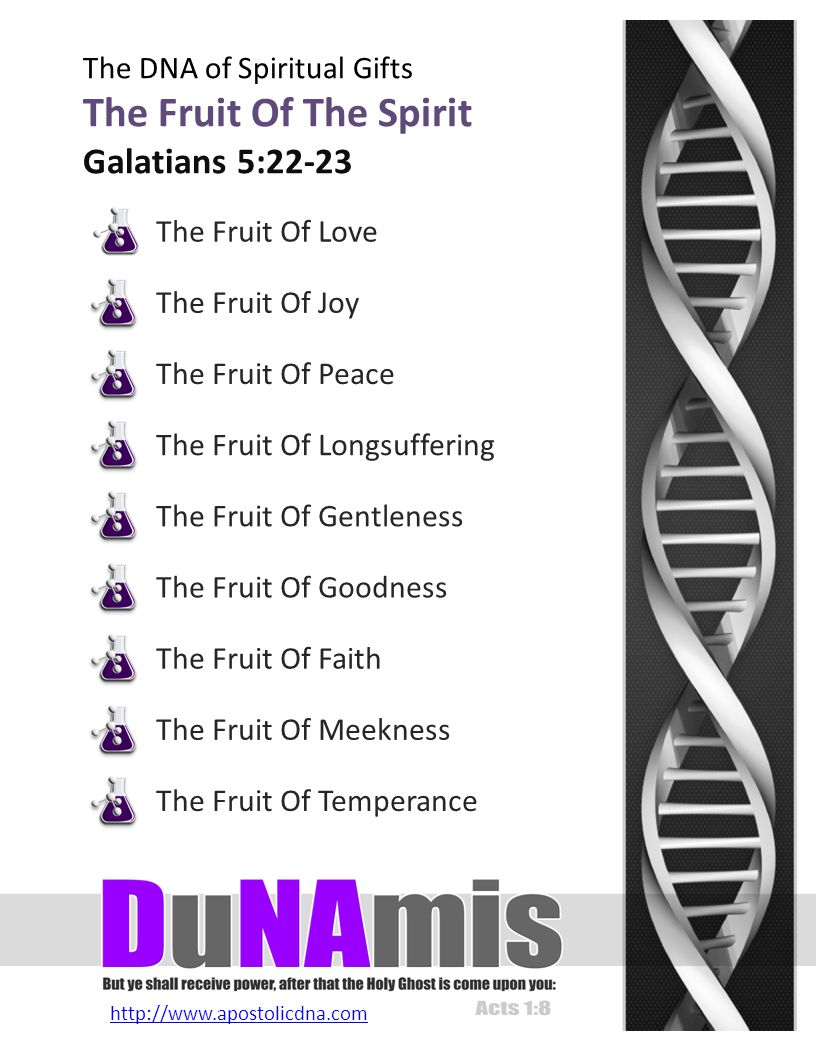 http://www.apostolicdna.com The DNA of Spiritual Gifts Spiritual Gifts Differences Of Administration The various offices i.e … the five fold ministry, elders, deacons, helpers, church officers and church members, along with varying levels of authority within each office or position.