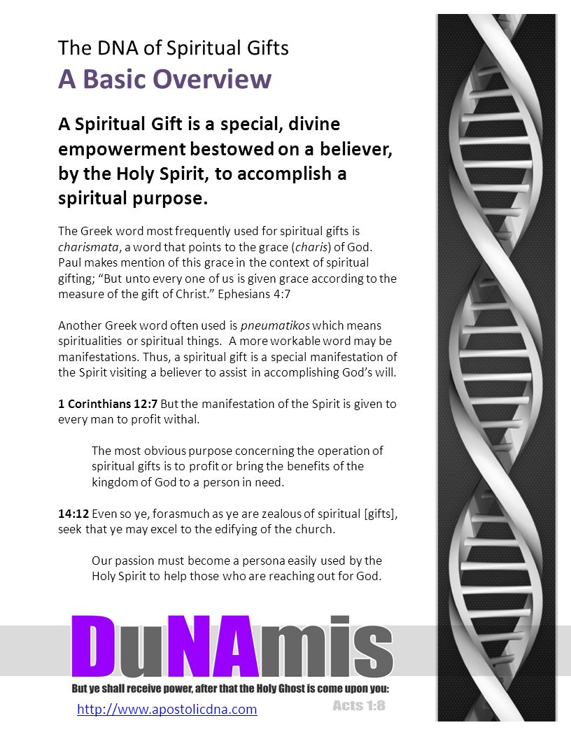 http://www.apostolicdna.com The DNA of Spiritual Gifts The Gift Of Prophecy Declaration Of Divine Intention Keywords: see the future, predict, foretell Governing Be-Attitude Blessed are the pure in heart: for they shall see God.