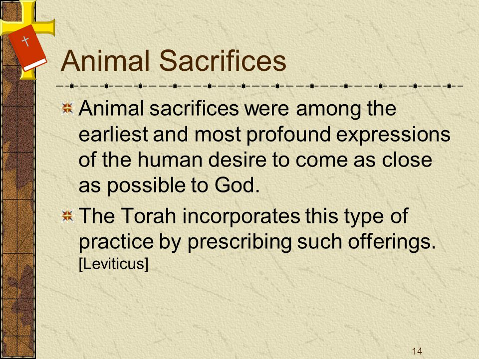 Animal Sacrifices Animal sacrifices were among the earliest and most profound expressions of the human desire to come as close as possible to God. The